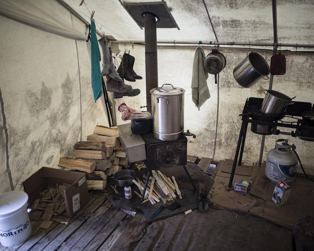 buffalo scavengers Montana tent wood stove